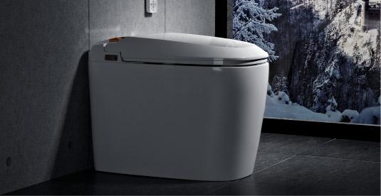 smart toilet home